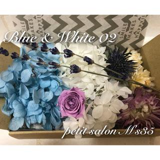 ハーバリウム花材★Blue&White02(ドライフラワー)