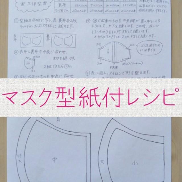 3m ds2 マスク - ハンドメイド マスク 型紙付レシピの通販