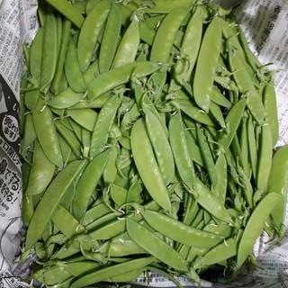 1箱限定  きぬさや えんどう 600g 送料無料 柔らかくて美味しい(野菜)