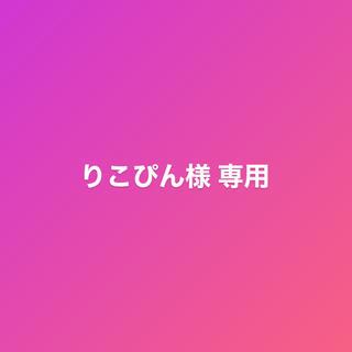 りこぴん様 専用(国内アーティスト)