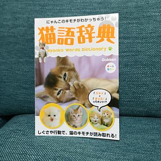 ガッケン(学研)の猫語辞典 にゃんこのキモチがわかっちゃう!(住まい/暮らし/子育て)