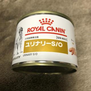 ロイヤルカナン(ROYAL CANIN)のROYAL CANIN ユリナリーS/O(ペットフード)