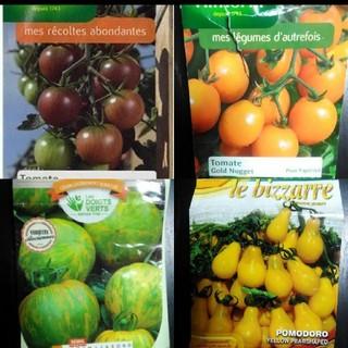 1月~5月蒔き イタリア野菜の種子など。カラフルなトマトの種 4種類10粒ずつ (野菜)