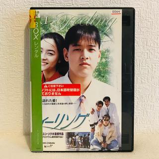 『フィーリング』全8巻(完)レンタル落ち DVD 韓国ドラマ(TVドラマ)