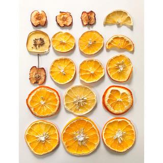 オレンジ レモン キウイ 姫リンゴ ドライ(ドライフラワー)