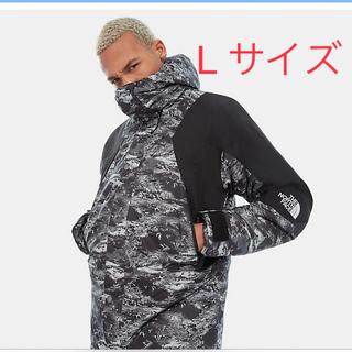 ザノースフェイス(THE NORTH FACE)の海外限定 mountain light jacket(マウンテンパーカー)