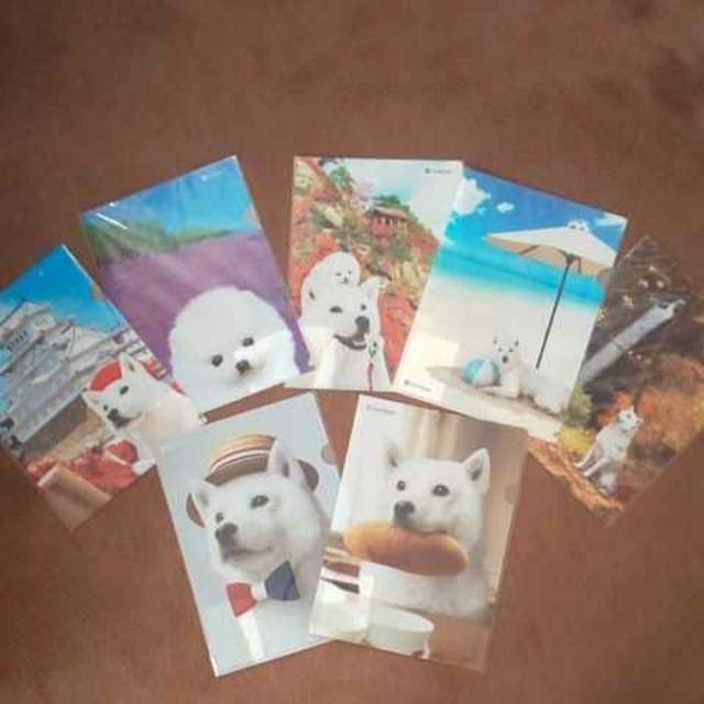 Softbank(ソフトバンク)のSoftbank  お父さんクリアファイル 7枚 セット  エンタメ/ホビーのアニメグッズ(クリアファイル)の商品写真