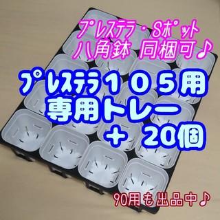 【スリット鉢】プレステラ105白20個 + 専用システムトレー黒1枚 多肉植物(プランター)
