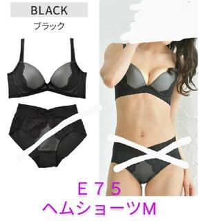 新品 🐼🐾 グラモア プリンカップブラ ブラック E75→D75 ショーツM(ブラ)