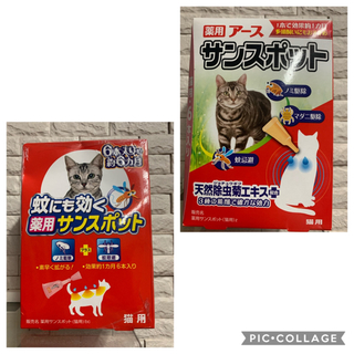 アースバイオケミカル(アースバイオケミカル)の1年分合計12本入り☆猫用サンスポット 無香料 &蚊にも効く薬用サンスポット(猫)