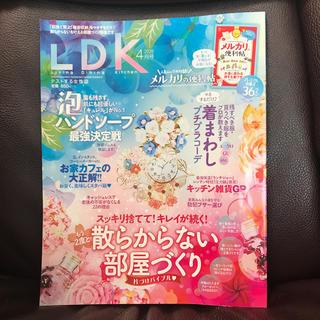 LDK (エル・ディー・ケー) 2020年 04月号 雑誌(生活/健康)
