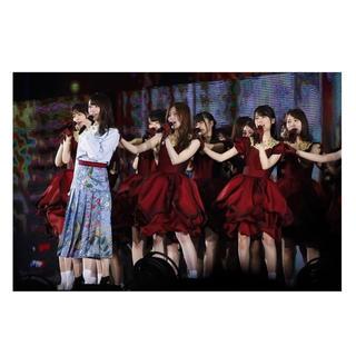 乃木坂46 - 乃木坂46 5th year birthday live DVD