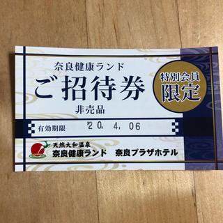 奈良健康ランド ご招待券(その他)