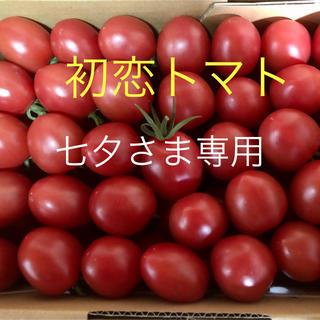 初恋トマト2キロ【七夕さま専用 3/18発送】(野菜)