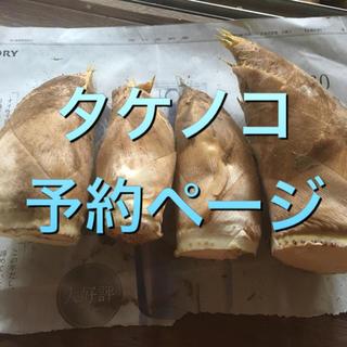タケノコ 予約ページ(野菜)