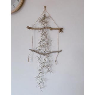 天然流木のラダーにアーティフィシャルフラワーのスパニッシュモス(インテリア雑貨)