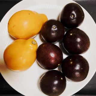 沖縄産人気のパッションフルーツ2種!レアなパッシフローラアラタのセット(フルーツ)