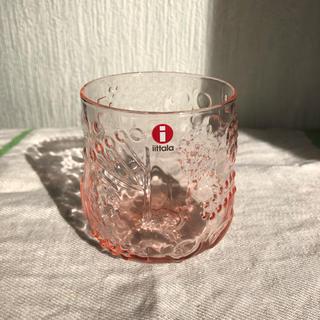 イッタラ(iittala)の新品☆ イッタラ フルッタ サーモンピンク 1個(グラス/カップ)