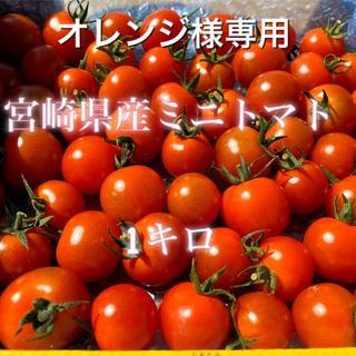オレンジ様専用 宮崎県産ミニトマト 1キロ(野菜)