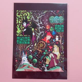 Disney - 【ウォルトディズニーワールド🇺🇸】眠れる森の美女・ビッグポストカード
