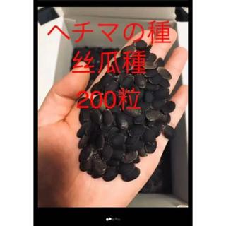 ヘチマの種200粒+50(野菜)