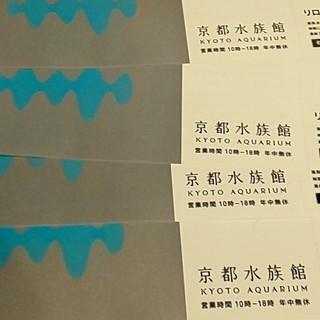 京都水族館 入場券 4枚