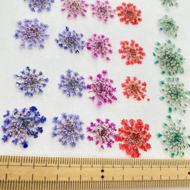 【専用】flower様 ハンドメイドのフラワー/ガーデン(ドライフラワー)の商品写真