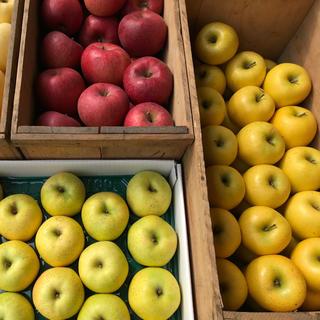 リンゴ3種詰め合わせ、3㎏(フルーツ)
