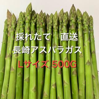 長崎産アスパラガス Lサイズ 500G(野菜)