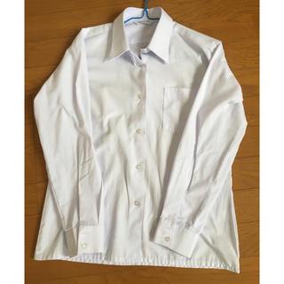 学生制服  カッターシャツ(シャツ/ブラウス(長袖/七分))