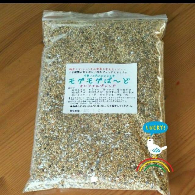 生きた種 10穀ブレンド モグモグばーど 鳥の餌 その他のペット用品(鳥)の商品写真