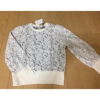 アナイ(ANAYI)の新品☆ANAYIレースニット・白☆36サイズ(ニット/セーター)