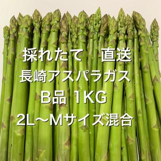 長崎産アスパラガス B品 1KG(野菜)