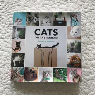 CATS ON INSTAGRAM(趣味/スポーツ/実用)