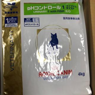 ロイヤルカナン(ROYAL CANIN)のロイヤルカナン 猫 PHコントロール1フィッシュテイスト4キロ(猫)