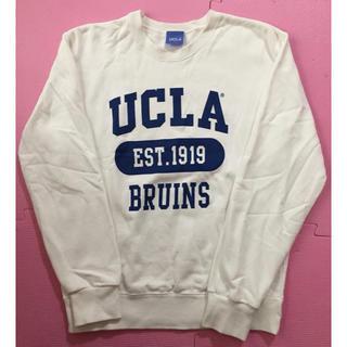 BEAUTY&YOUTH UNITED ARROWS - カレッジスウェット UCLA