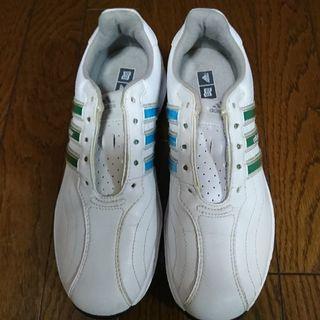 アディダス(adidas)のゴルフシューズ(その他)