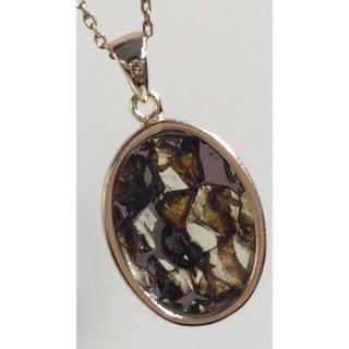 ✴︎☆パラサイト隕石 silver ペンダントトップ☆✴︎レア♪(ネックレス)