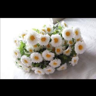 造花 まとめ売り ホワイトデイジー24本セット(その他)