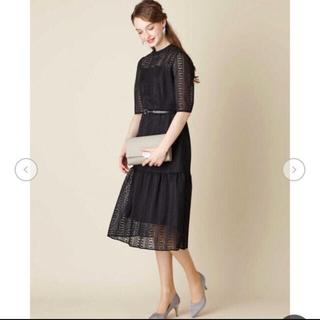 AIMER - aimer マーメイドライン ストライプレースドレス エメ 結婚式 ドレス
