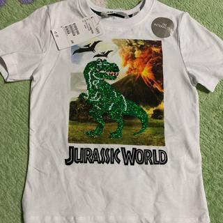 エイチアンドエム(H&M)のTシャツ(Tシャツ/カットソー)