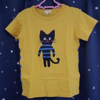 HusHush - 美品☆ハッシュアッシュ ボーダー猫 半袖Tシャツ 男女兼用 120