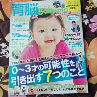 シュフトセイカツシャ(主婦と生活社)の育脳Baby-mo 0〜3才の可能性を引き出す7つのこと(住まい/暮らし/子育て)