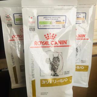 ロイヤルカナン(ROYAL CANIN)のロイヤルカナン ユリナリー S/O 500g 3個セット(猫)