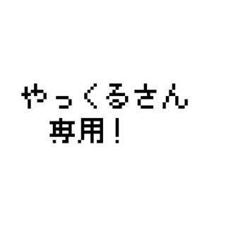 【大感謝】やっくる氏専用(その他)