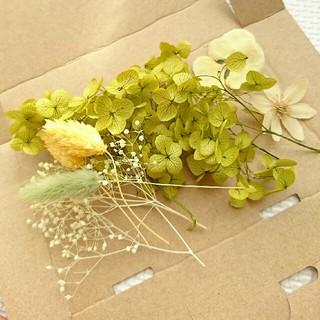 花材の使いきりパック プリザーブドフラワー おまけ付!(ドライフラワー)
