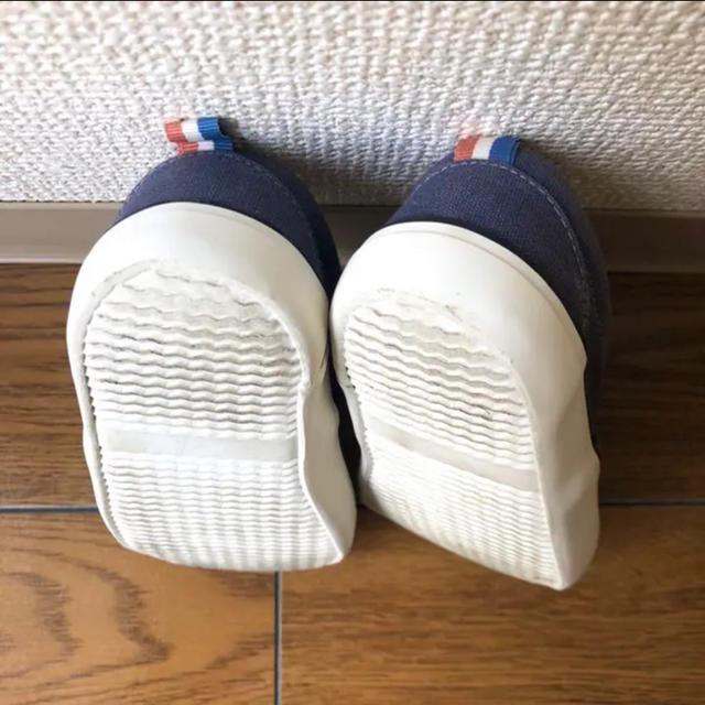 しまむら(シマムラ)のテータテート tete a tete 14cm 靴 スニーカー キッズ/ベビー/マタニティのベビー靴/シューズ(~14cm)(スニーカー)の商品写真