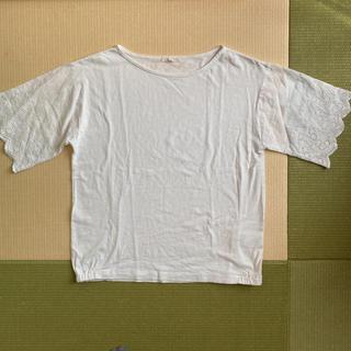 スタディオクリップ(STUDIO CLIP)のスタディオクリップ半袖コットンレースカットソー(カットソー(半袖/袖なし))