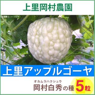 【HS5】上里岡村農園寅さんのアップルゴーヤ白秀のタネ5粒(野菜)