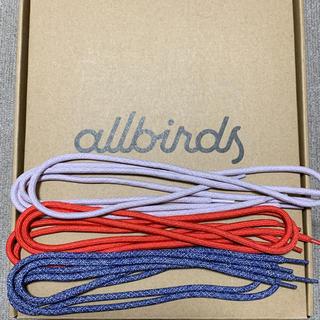 【限定品】allbirds(オールバーズ)靴紐6本(スニーカー)